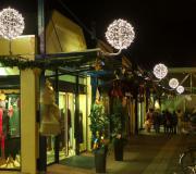Winkelcentrum-Liekenblom
