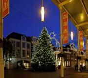 Grote-kerstboom-Westerhaven